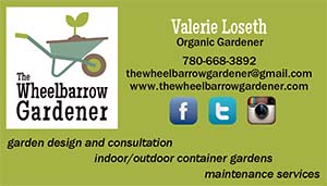 wg_biz_card_front_version 2