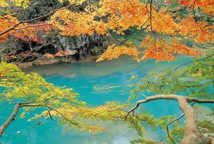 厳美渓の秋
