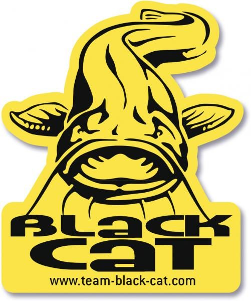 Logo Black Cat