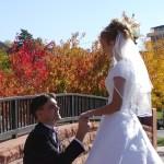 Fall Proposal