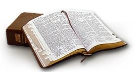 A Scripture a Day
