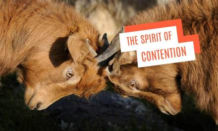 Contention and the spirit of contention