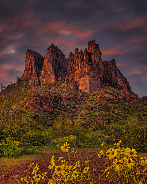 Colorful sunset with spring flowers, superstition mountain range, apache junction, arizona