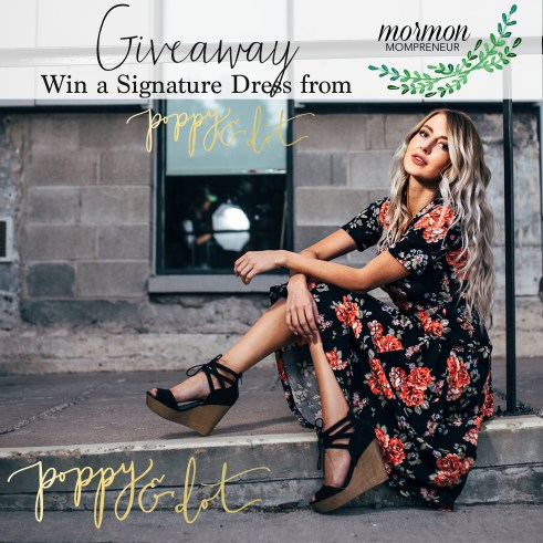 mormon mompreneur poppy and dot giveaway