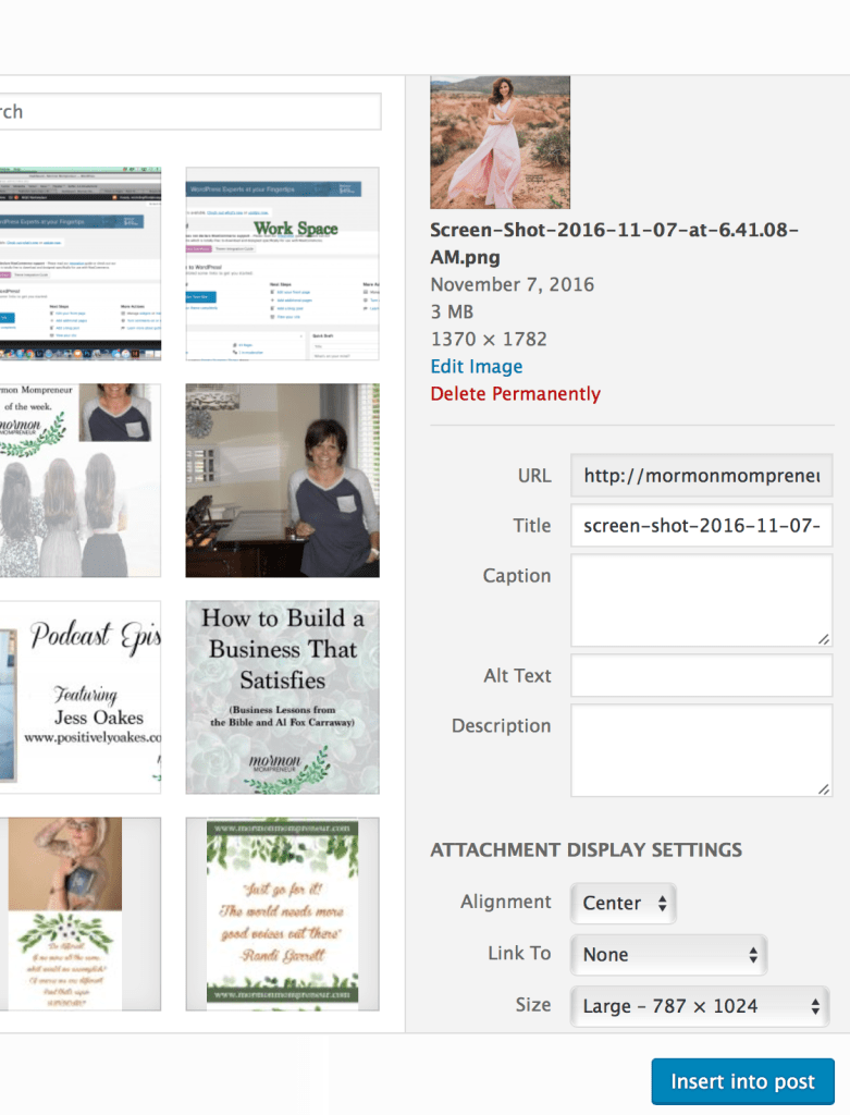 Mormon Mompreneur wordpress tour how to create a post