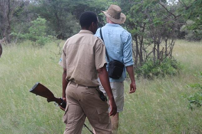 Safari og bush brunch i Botswana