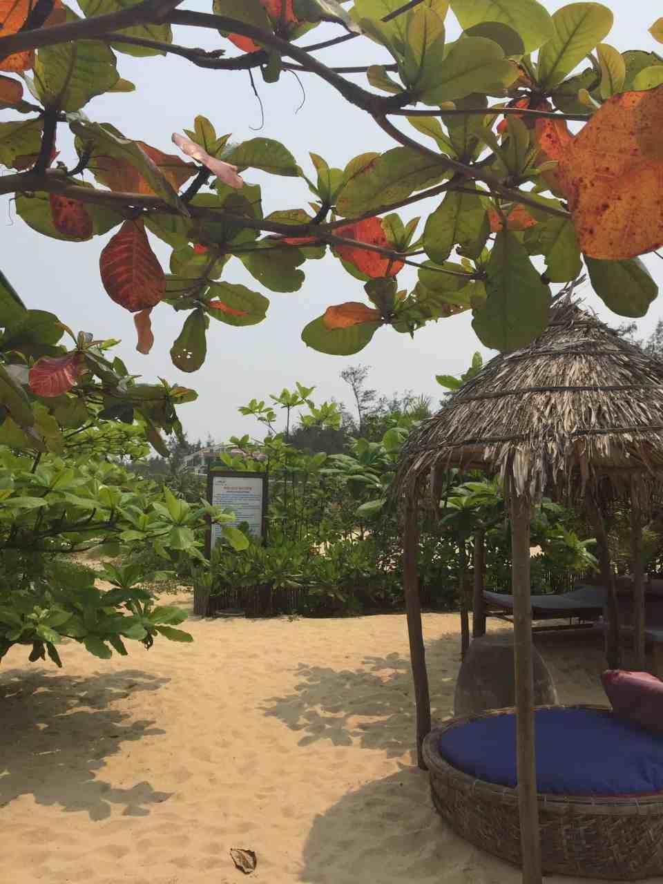 Beach Bar Hue