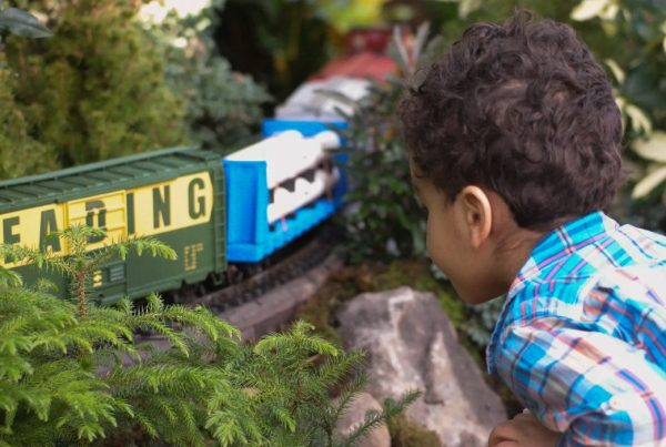 Child watching a model train pass him by at the NY Botanical Garden's Holiday Train Show