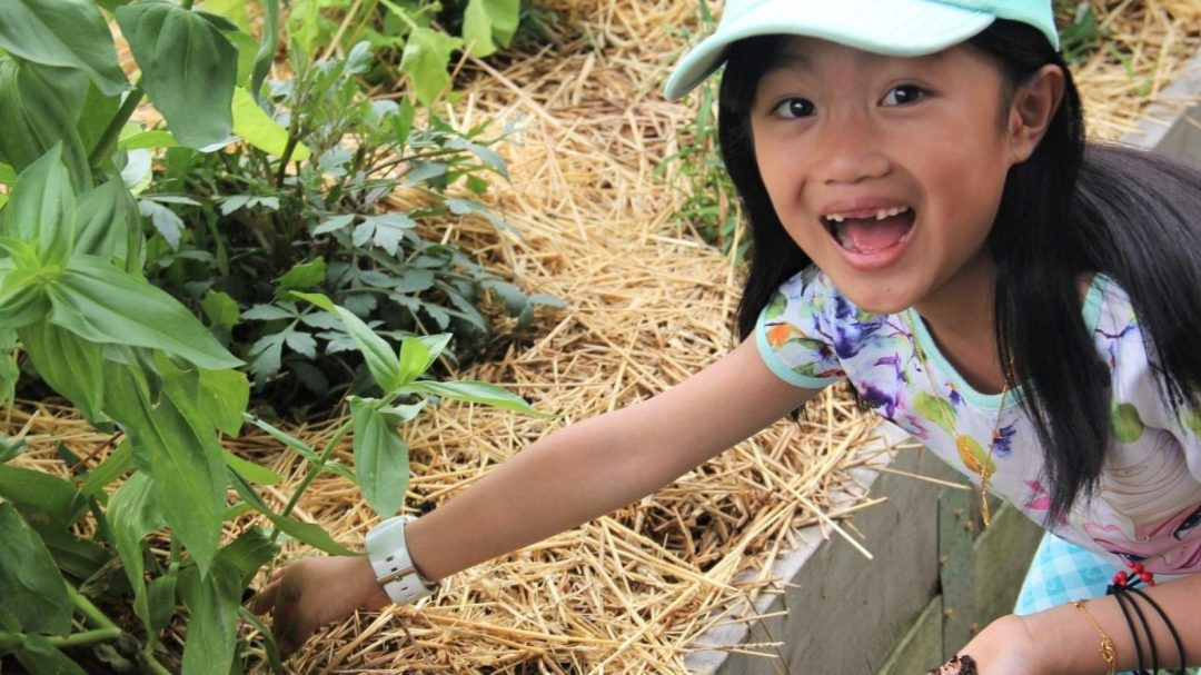 Young student smiling as she plants seeds into a garden