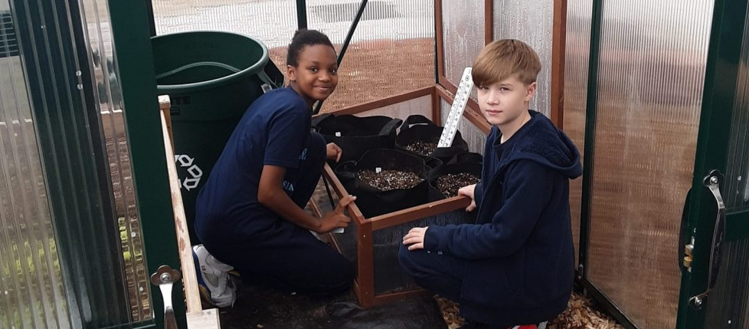 Two NYC public school student planting seeds in an outdoor greenhouse