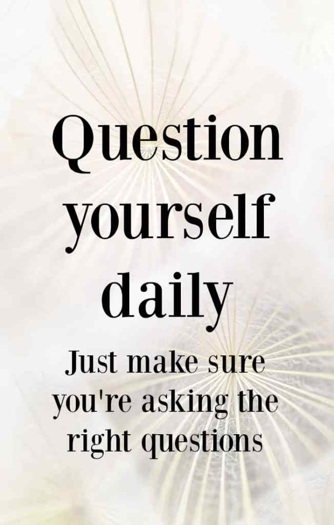 Question yourself daily. Just make sure you're asking the right questions. How to feel more successful in your business even if you're a long way from the business success you want.
