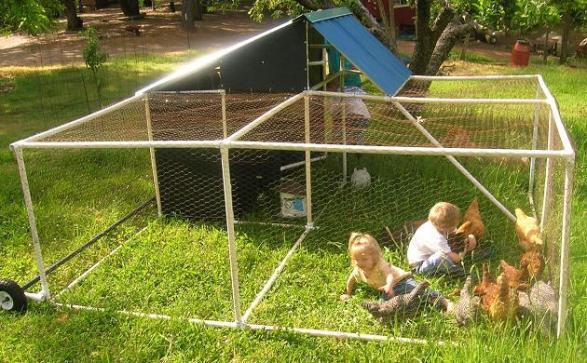 61 diy chicken coop plans that are easy to build 100 free for Chicken coop made from pvc