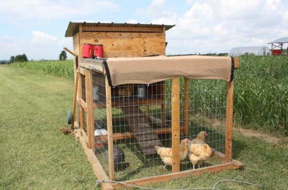 Chicken House Gorgeous 61 Diy Chicken Coop Plans That Are Easy To Build 100% Free Design Ideas
