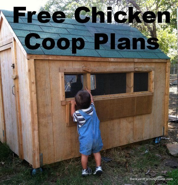 Easy Diy 4 X6 Chicken Coop Hen House Plans Pdf: 61 DIY Chicken Coop Plans That Are Easy To Build (100% Free