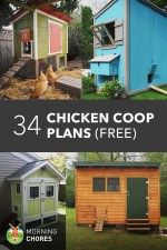 34 DIY Chicken Coop Plans & Ideas that are Easy to Build (100% Free)