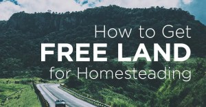 13 Places in the US Where You Can Find Free Land for Your Homestead