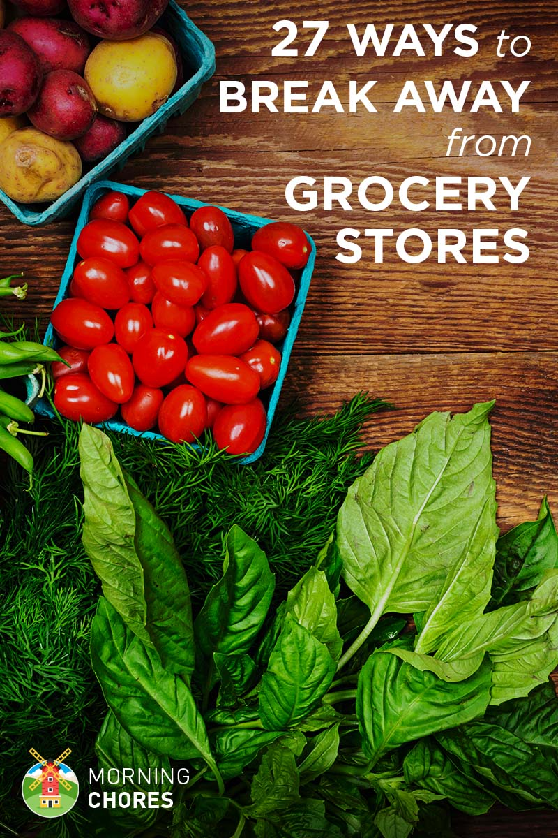 27 Ways To Break Away From The Grocery Store For Good by Making and Growing Everything You Need
