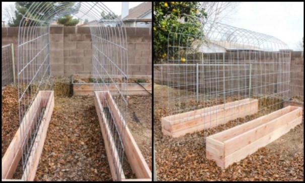 32 DIY Tomato Trellis Cage Ideas for Healthy Tomatoes