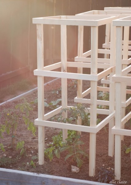 32 diy tomato trellis cage ideas for healthy tomatoes - Building trellises property ...