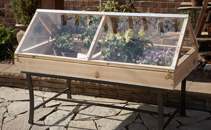 Superb The Table Top Greenhouse