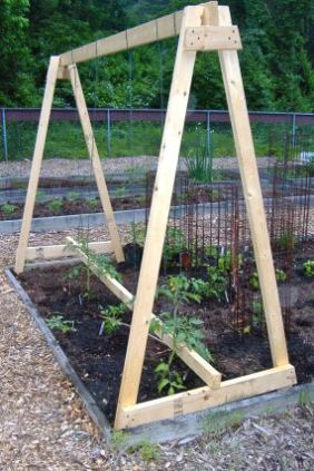 if you are looking for a whopper tomato trellis that will keep your plants from sagging this is probably going to be what you were looking for