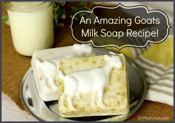 Goats-Milk-Soap-Recipe