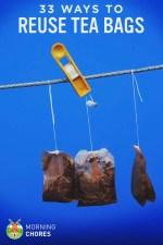 33 Smart Ways to Reuse Tea Bags (Other Than to Make More Tea)
