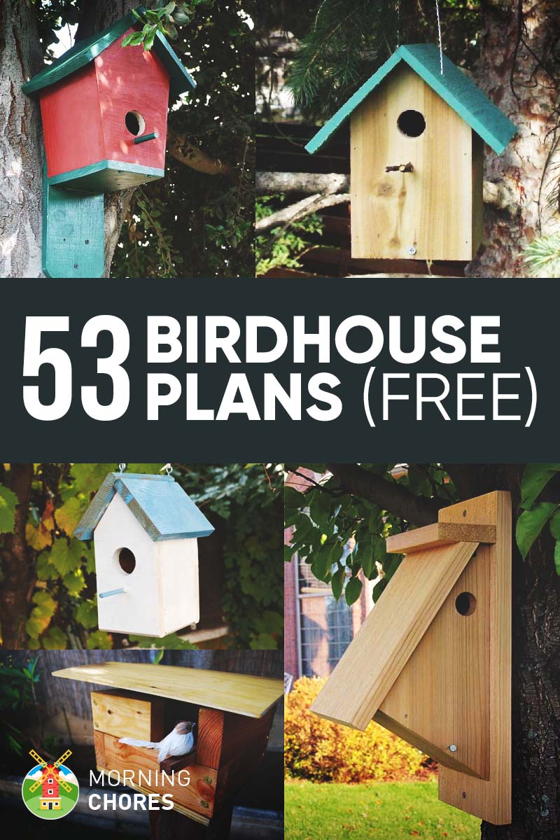 53 Diy Birdhouse Plans That Will Attract Them To Your Garden