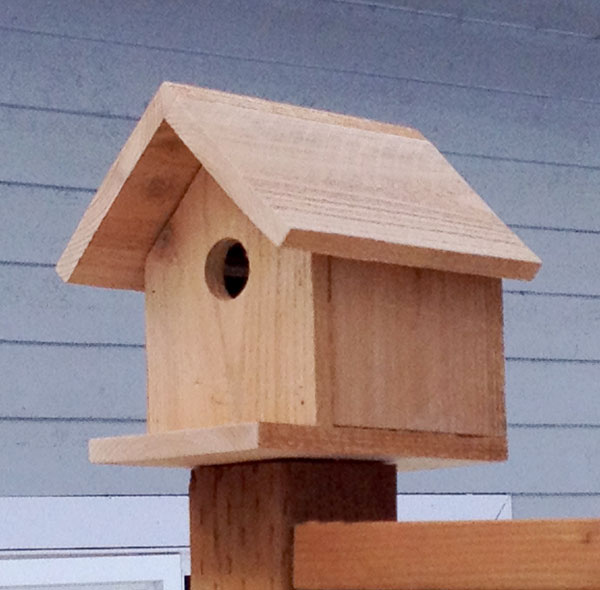 53 diy bird house plans that will attract them to your garden for Diy home building plans