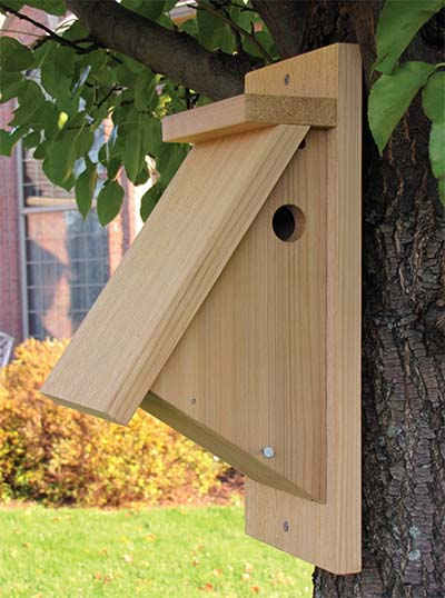 Build a backyard birdhouse the family handyman 53 diy bird for Best birdhouse designs