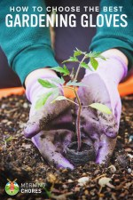 What are the Best Gardening Gloves? Here are Our Top 5 Reviews