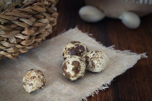 quail-eggs-1247388_640