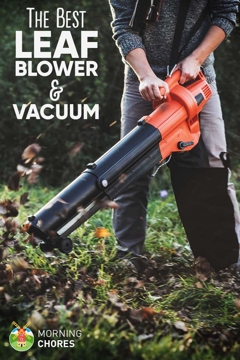 Best Leaf Blower Vacuum 2017