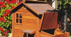 How to Clean Your Chicken Coop & Run: 9 Tips to Do It Right
