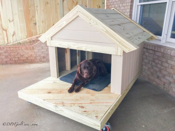 Captivating This Dog House Is Perfect For Any Size Dog. It Has Ample Amount Of Lounging  Space, And It Appears Like It Would Give Your Dog Plenty Of Coverage From  The ...
