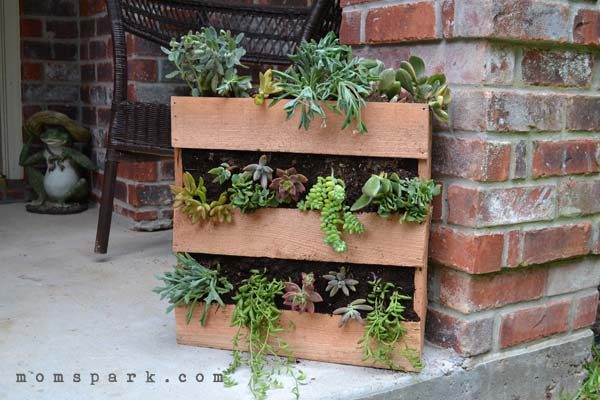 Elegant Easy Pallet Garden Ideas
