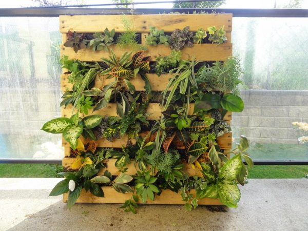 Some Of The Other Vertical Pallet Gardens Weu0027ve Looked At Have Been Pretty  Big. They Are Beautiful, But If You Live In A Smaller Home With A Smaller  Yard ...