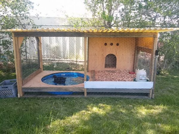 37 free diy duck house coop plans ideas that you can for Diy pool house plans