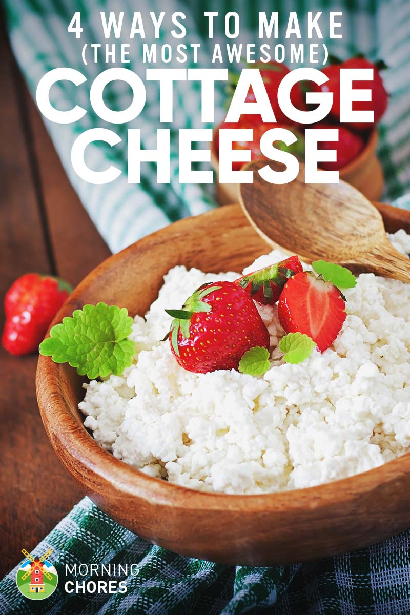 How to Make the Best Cottage Cheese Ever in 4 Different & Easy Ways