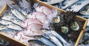 14 Healthiest & Best Fish to Eat (and 7 to Absolutely Steer Clear of)