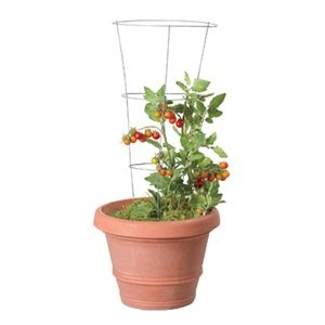 A Tomato Cage Or Trellis Is A Great Gift For The Gardener Who Loves  Tomatoes. My Husband And I Would Fit In That Category As That Is One Of The  Largest ...