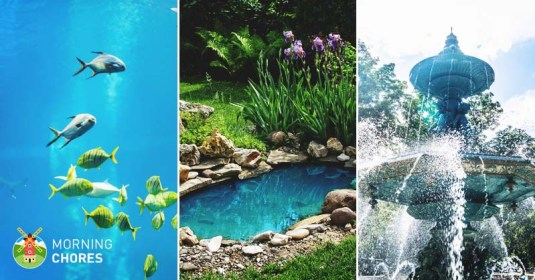 5 Best Pond Vacuum Reviews: Powerful Cleaners for Home Water Features