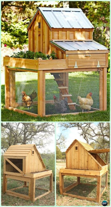 chicken coop with planter
