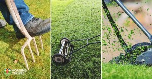 6 Best Lawn Aerator Reviews: How to Create A Beautiful Healthy Lawn