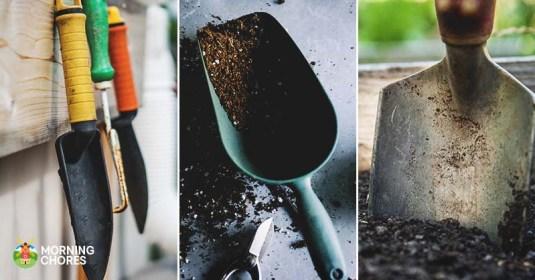 8 Best Garden Trowel Reviews: Versatile Tools for Gardening and More