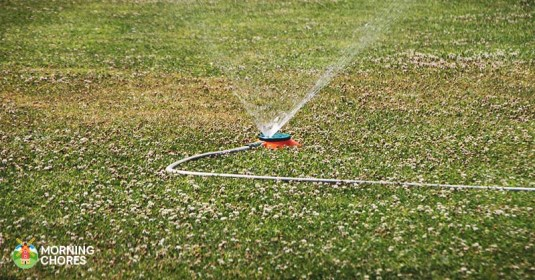 5 Best Sprinkler Controller Reviews: Smart Water-Saving Garden Gadgets