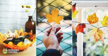 19 Inspiring Fall Leaf Crafts Perfect for Bringing the Outside In