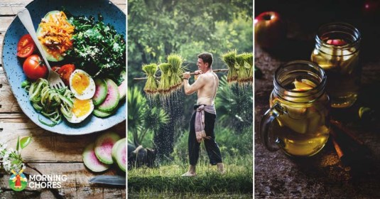 12 Simple Tips for a Healthy Homestead New Year Start Off