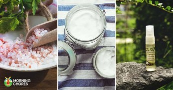 15 Fresh Feeling Natural Homemade Deodorant Recipes