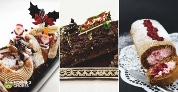 18 Enchanting Yule Log Recipes to Grace Your Christmas Table